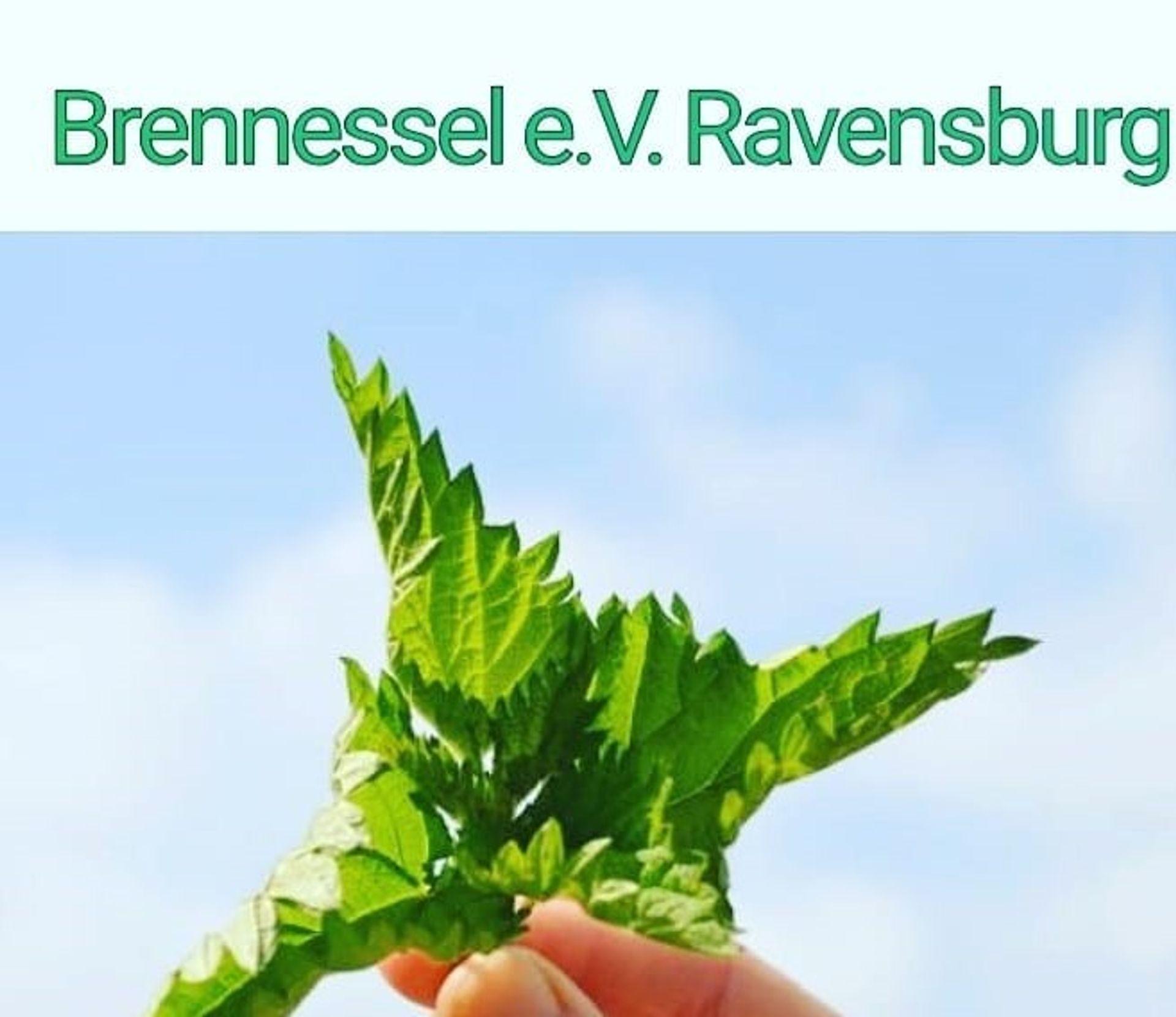 Fachberatungsstelle Brennessel erhält Frühlingsball-Spenden